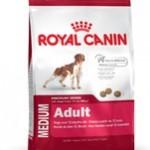 Kom i gang med Royal Canin i dag, se om det er noget for din hund (Foto Petworld.dk)