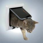 Står katten og miaver ved døren? Giv den sin egen (foto lavprisdyrehandel.dk)